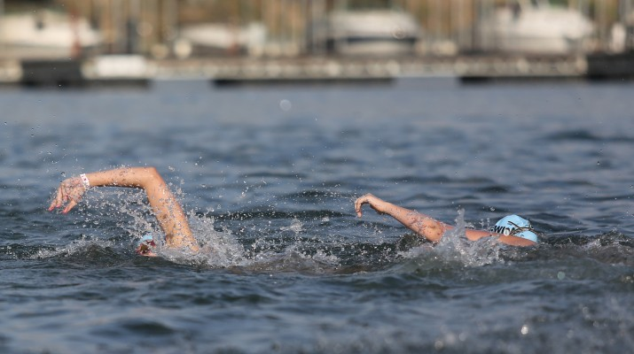 About 500 people joined Swim Across America Saturday to raise money for cancer research.